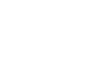 Black Dog Animals Rescue