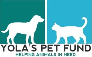 Yola's Pet Fund